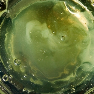 absinthe close up